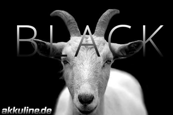 Black is Back | Angebote zu Black Friday